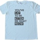 YOUVE CAT TO BE KITTEN ME RIGHT MEOW – Tee Shirt Gildan Softstyle Light Blue (Medium)