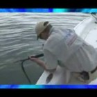 Funny Fishing! Funny Fisherman! Funny Fishing Videos! Most Watched Chew On This Show