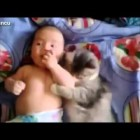 WORLD'S MOST FUNNY CAT AND DOG (VERY FUNNY VIDEOS 2014)