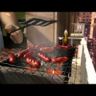 Larva cartoon (2011) Episode Wild World