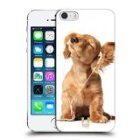Head Case Designs Young Puppy Listening To Music Funny Animals Protective Snap-on Hard Back Case Cover for Apple iPhone 5 5s